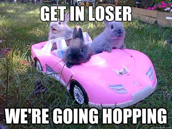 get in loser were going hopping - Mean Bunnies