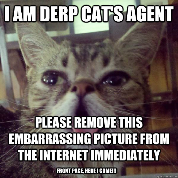 i am derp cats agent please remove this embarrassing pictur - DerpCat