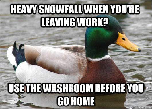 heavy snowfall when youre leaving work use the washroom be - Actual Advice Mallard