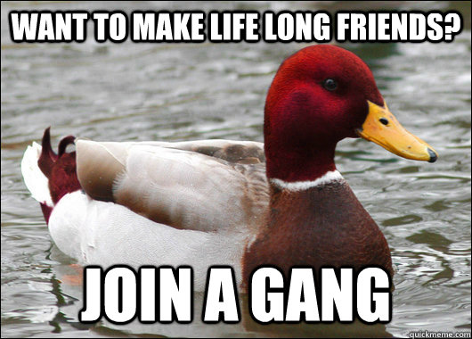 want to make life long friends join a gang - Malicious Advice Mallard