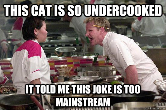 this cat is so undercooked it told me this joke is too mains - 