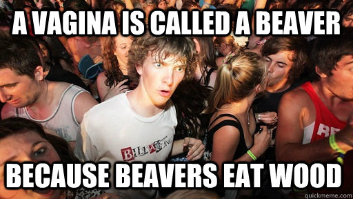 a vagina is called a beaver because beavers eat wood - Sudden Clarity Clarence