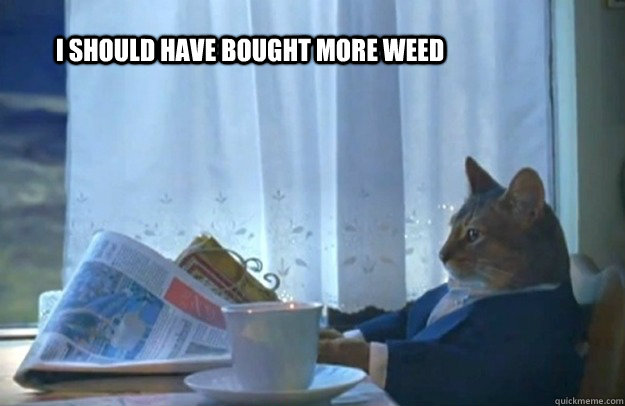 i should have bought more weed - Sophisticated Cat