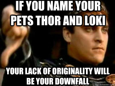if you name your pets thor and loki your lack of originality - Downvoting Roman