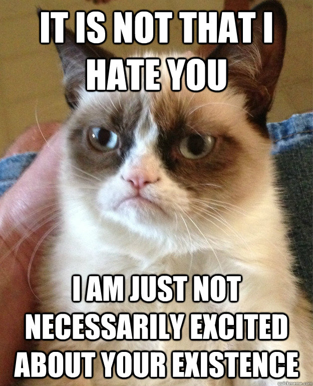 it is not that i hate you i am just not necessarily excited  - Grumpy cat
