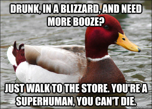 drunk in a blizzard and need more booze just walk to the  - Malicious Advice Mallard