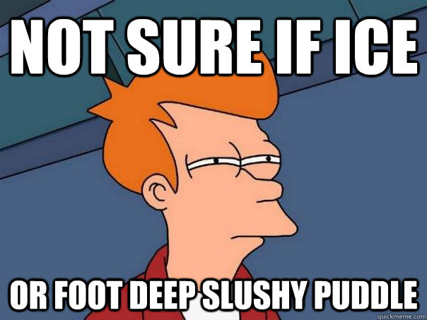 not sure if ice or foot deep slushy puddle - Futurama Fry