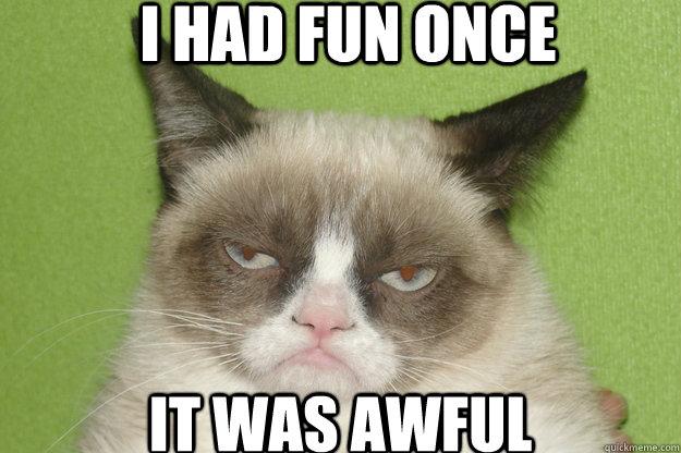 had fun once it was awful - GrumpyCat1Angry Cat Meme I Had Fun Once