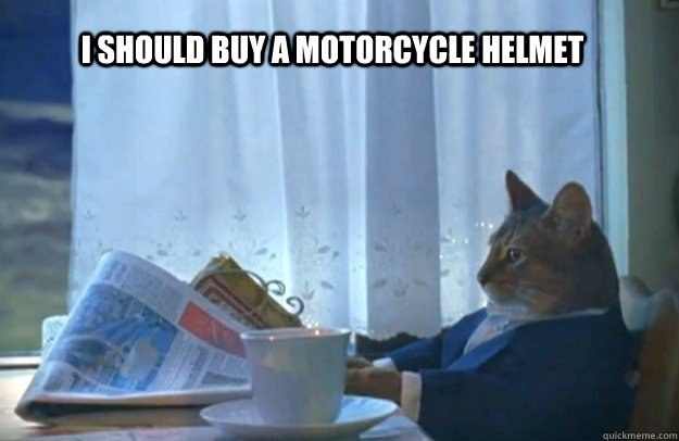 i should buy a motorcycle helmet - Sophisticated Cat