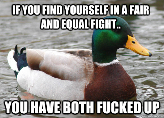 if you find yourself in a fair and equal fight you have bo - Actual Advice Mallard