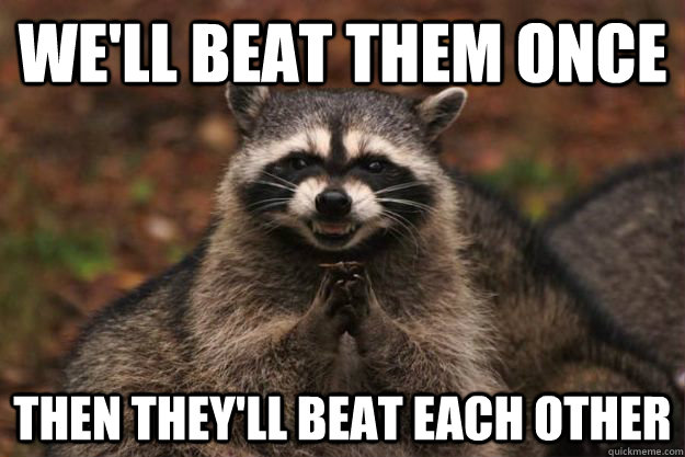 well beat them once then theyll beat each other - Evil Plotting Raccoon