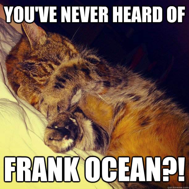 youve never heard of frank ocean - Frustration Cat
