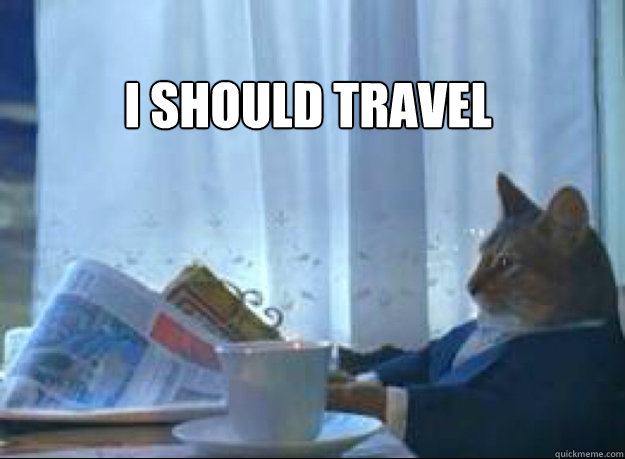 i should travel  - I should buy a boat cat