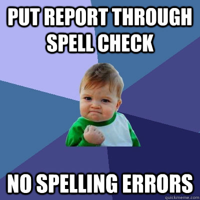 put report through spell check no spelling errors - Success Kid