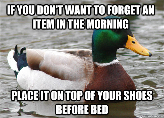 if you dont want to forget an item in the morning place it  - Actual Advice Mallard