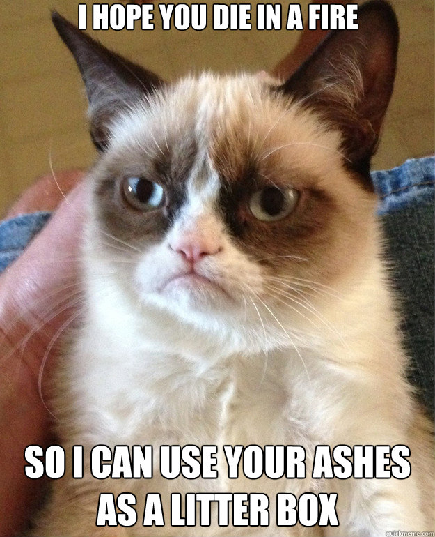 i hope you die in a fire so i can use your ashes as a litter - Grumpy Cat