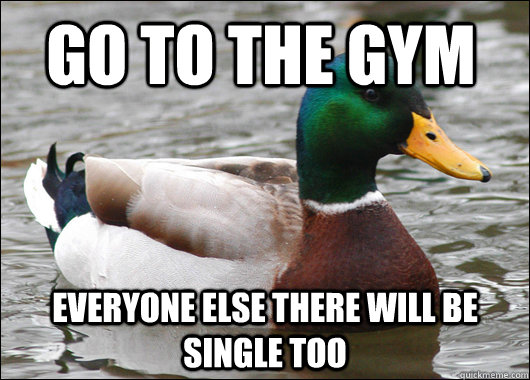 go to the gym everyone else there will be single too - Actual Advice Mallard