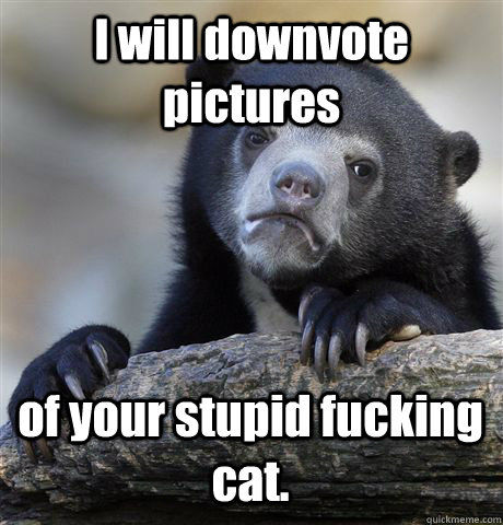 i will downvote pictures of your stupid fucking cat  - Confession Bear