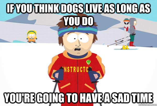 if you think dogs live as long as you do youre going to hav - Super Cool Ski Instructor