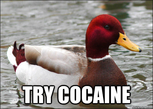 try cocaine - Malicious Advice Mallard