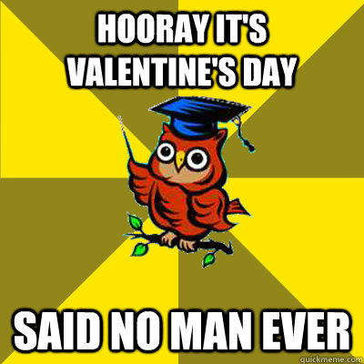 hooray its valentines day said no man ever - Observational Owl