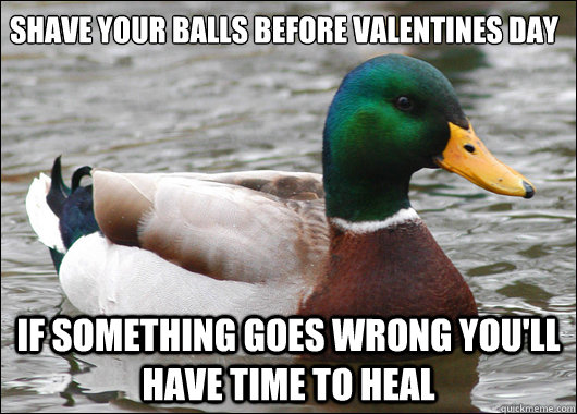 shave your balls before valentines day if something goes wro - Actual Advice Mallard