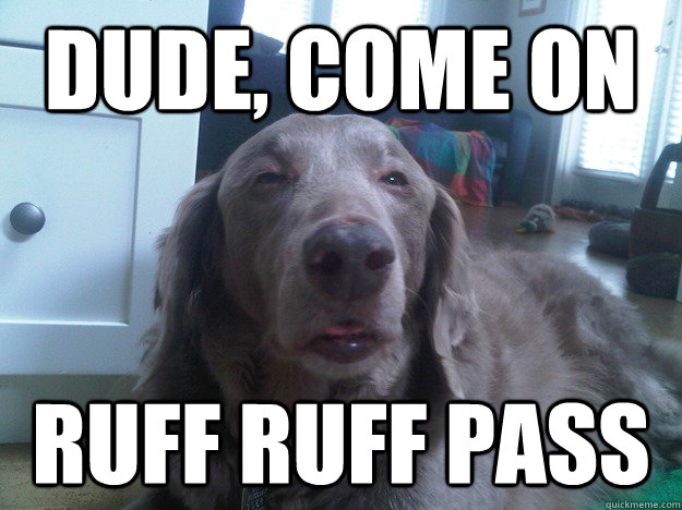 dude come on ruff ruff pass - 10 Dog