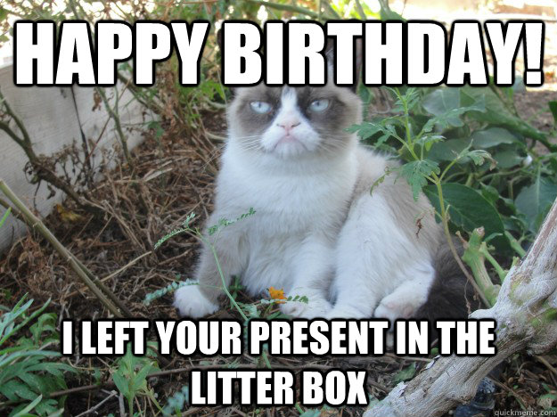 3szr16 happy birthday! i hope it's terrible 11 grumpy cat pics to brighten