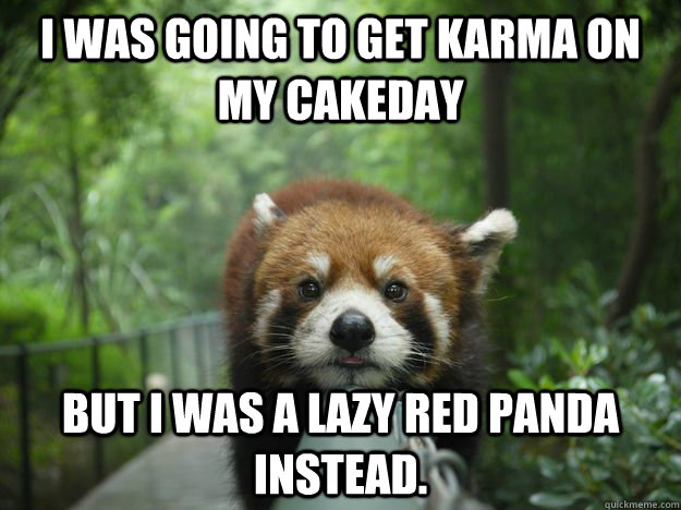 i was going to get karma on my cakeday but i was a lazy red  - Lazy Red Panda