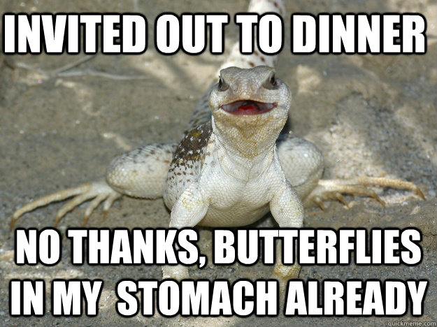 invited out to dinner no thanks butterflies in my stomach  -