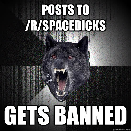 posts to rspacedicks gets banned - insanitywolf