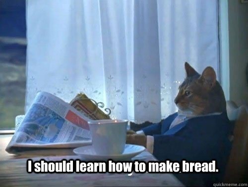 i should learn how to make bread - Fancy Cat