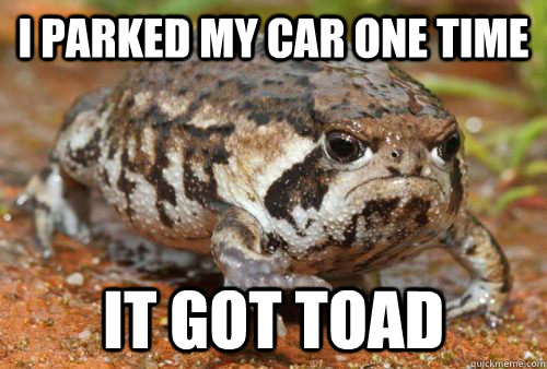 i parked my car one time it got toad - Grumpy Toad