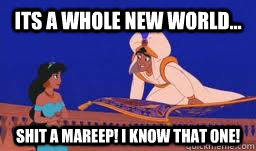 its a whole new world shit a mareep i know that one - aladdin