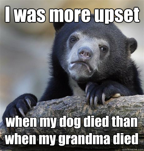 i was more upset when my dog died than when my grandma died - Confession Bear