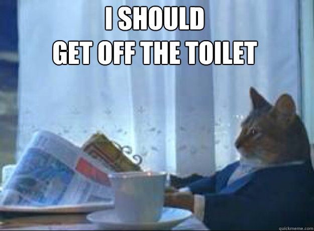 i should get off the toilet  - I should buy a boat cat