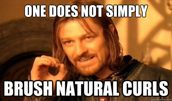 one does not simply brush natural curls - onedoesnotsimply