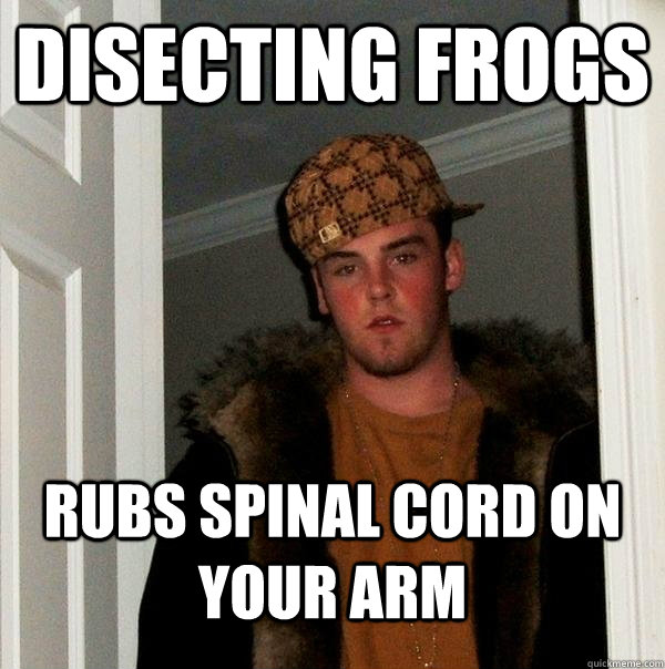 disecting frogs rubs spinal cord on your arm - Scumbag Steve