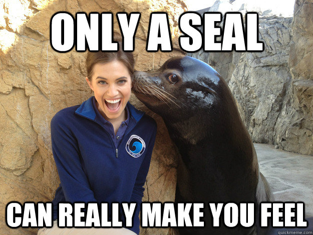 only a seal can really make you feel - Crazy Secret