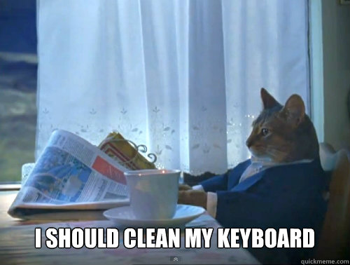 i should clean my keyboard - The One Percent Cat