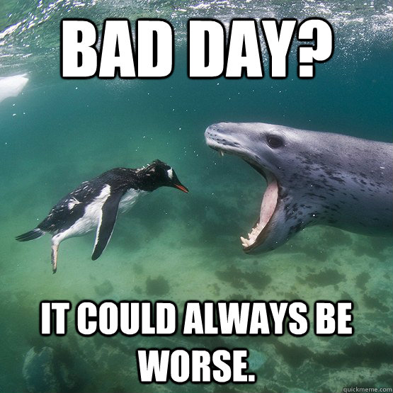 It Could Be Worse Meme bad day it coul...
