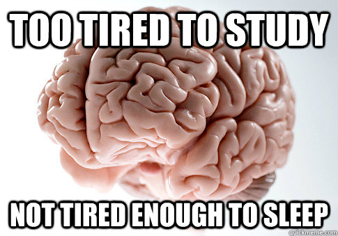 too tired to study not tired enough to sleep - Scumbag Brain