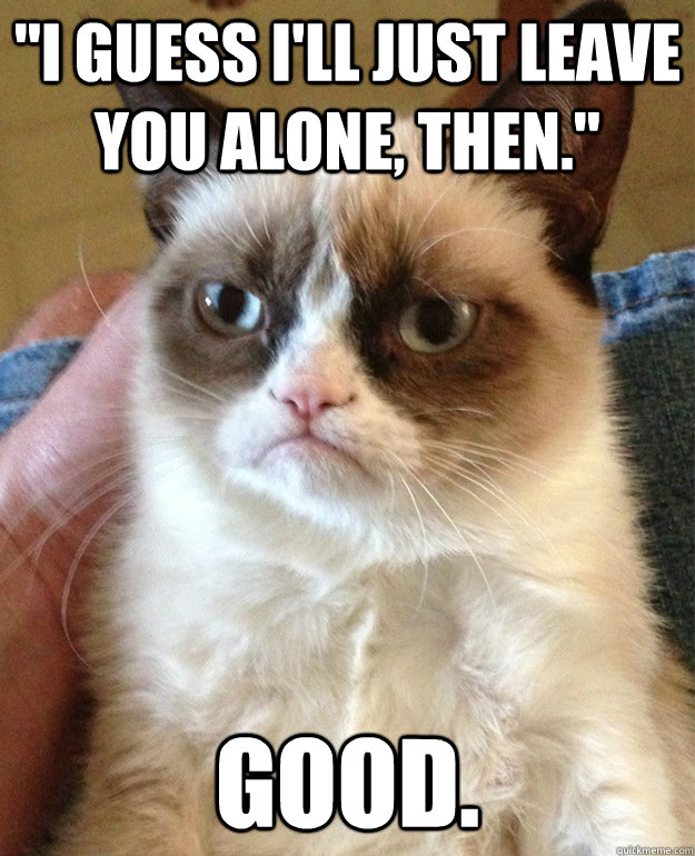 i guess ill just leave you alone then good - grumpycat