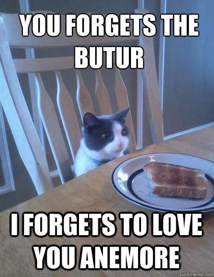 you forgets the butur i forgets to love you anemore - Breakfast Cat