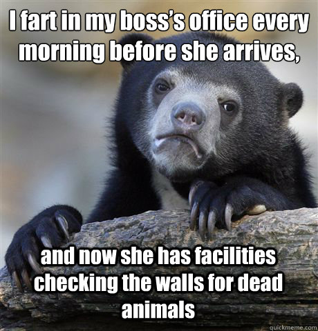 i fart in my bosss office every morning before she arrives - Confession Bear