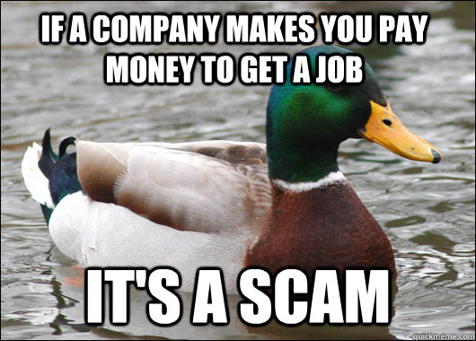 if a company makes you pay money to get a job its a scam - Actual Advice Mallard