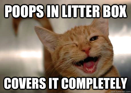 poops in litter box covers it completely  - GoodGuyCat