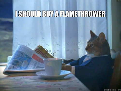 i should buy a flamethrower  - The One Percent Cat