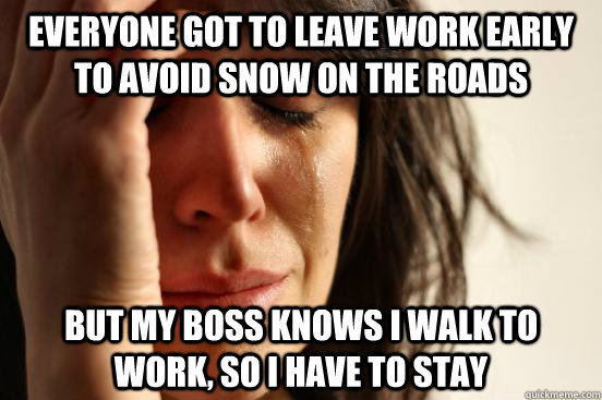 everyone got to leave work early to avoid snow on the roads  - First World Problems