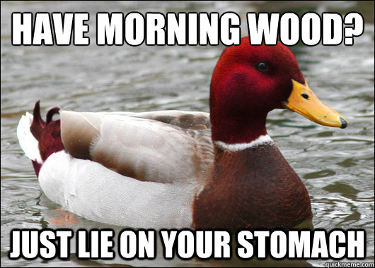 have morning wood just lie on your stomach - Malicious Advice Mallard